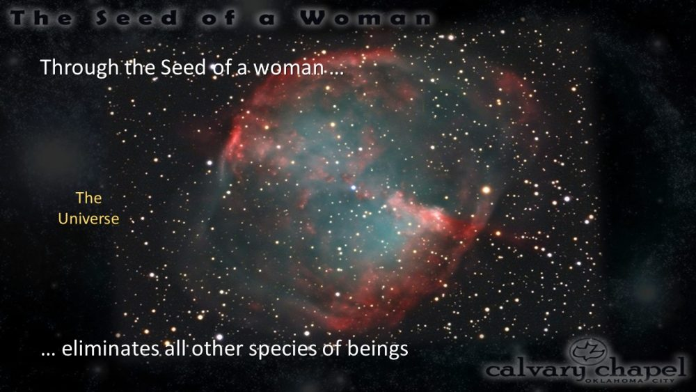 Christmas 2020: The Seed of the Woman Image
