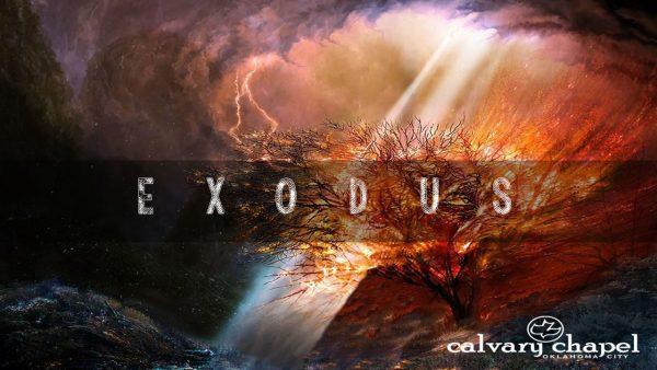 Exodus 35-40 Image